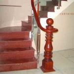 CT 003 Đỏ Ấn Độ